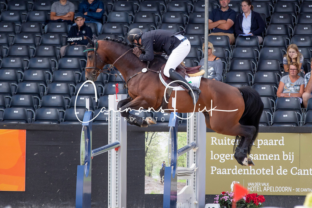 Mertens Thomas, NED, Icarus V<br /> KWPN Kampioenschappen - Ermelo 2018<br /> © Hippo Foto - Dirk Caremans<br /> 14/08/2018