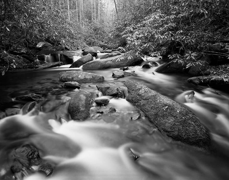 Lovinggood Creek - North Georgia - Chattahoochee National Forest - Mamiya 7II/43mm lens/Ilford Film