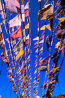Prayer flags on footbridge, Paro Valley, Bhutan