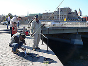 Fiske vid Strömmen.