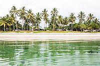 Palm tree lined East African coastline , Mombasa, Kenya