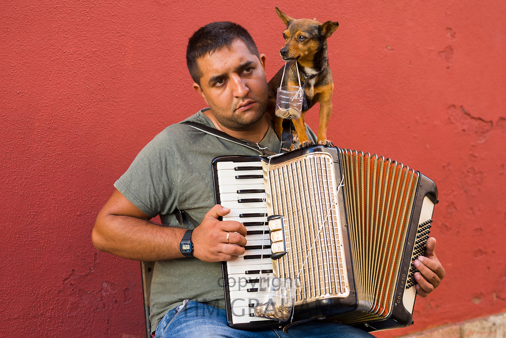 Street music - accordionist playing accordion for tourists with pet dog collecting donations in Alfama District of Lisbon, Portugal