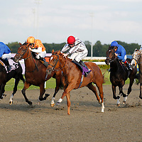 Pompeia and Jim Crowley winning the 7.00 race