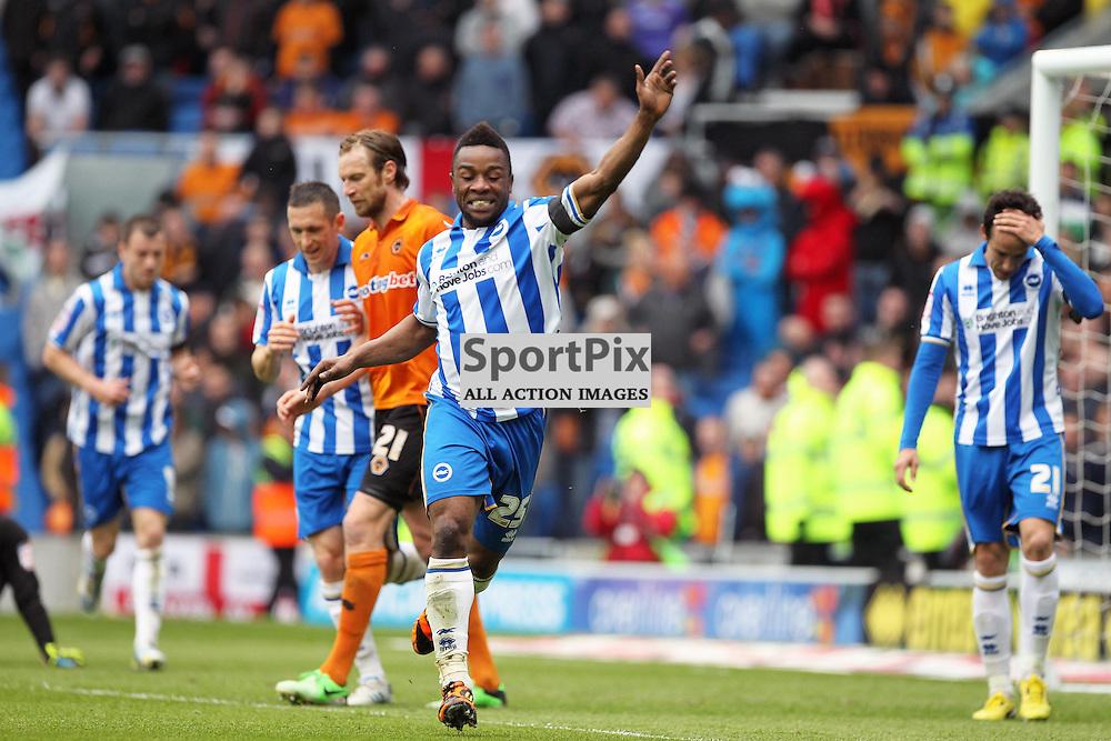 Brighton's Kazenga LuaLua celebrates his second goal (c) Phil Duncan | StockPix.eu
