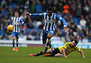 Rohan Ince  during the Sky Bet Championship match between Brighton and Hove Albion and Brentford at the American Express Community Stadium, Brighton and Hove, England on 17 January 2015.