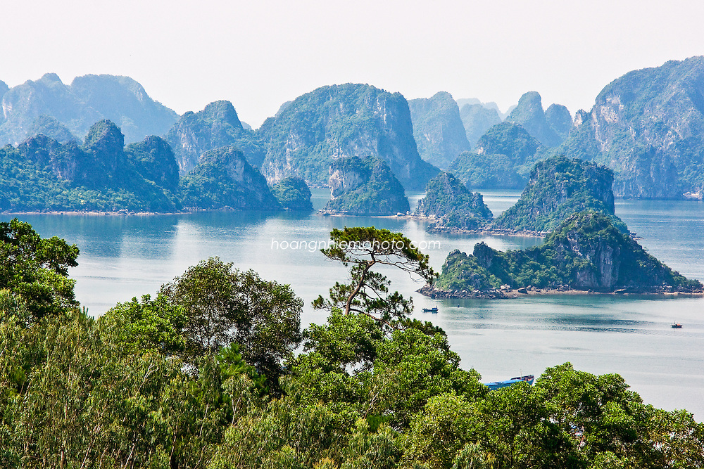 Vietnam Images-landscape- Ha Long bay