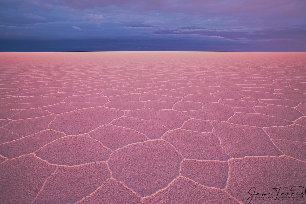 Hexagon shaped salt patterns on the Salar de Uyuni under pink light of sunset,  Bolivia,South America