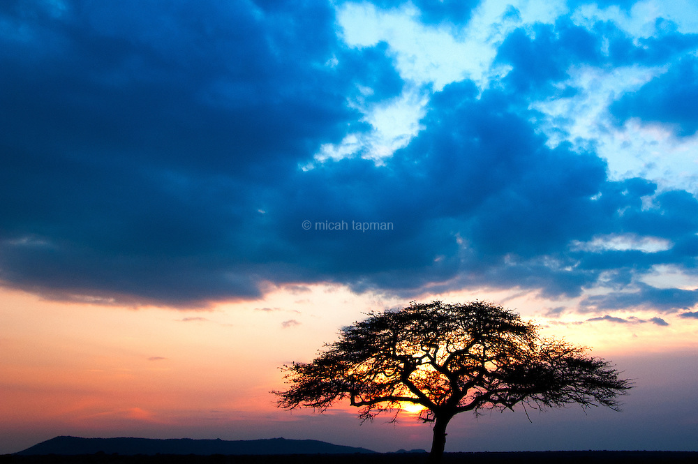 Sunset over the Serengeti in Tanzania