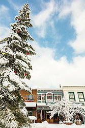 """Snowy Christmas Tree in Truckee 8"" - Photograph of the big Christmas Tree in historic Downtown Truckee, shot after a big snow storm."
