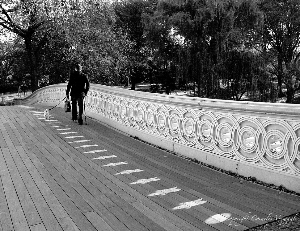 Man with a dog on Bow Bridge in Central park