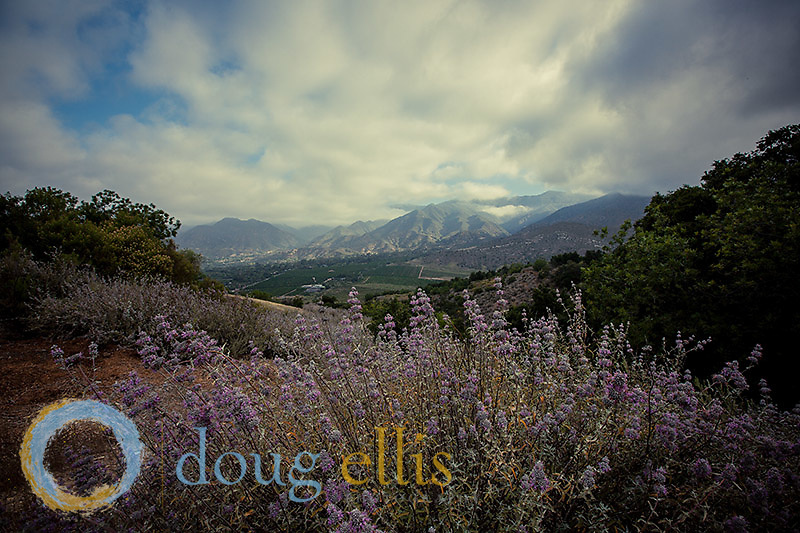 Outdoor lifestyle photos and stock Images and LIfestyle Photography in Santa Barbara and Ojai CA