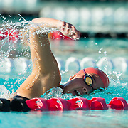 02 December 2016: The San Diego State Aztecs Swimming team hosted Pepperdine Friday afternoon at the SDSU Aquaplex. Event 2 1000 Yard Freestyle www.sdsuaztecphotos.com