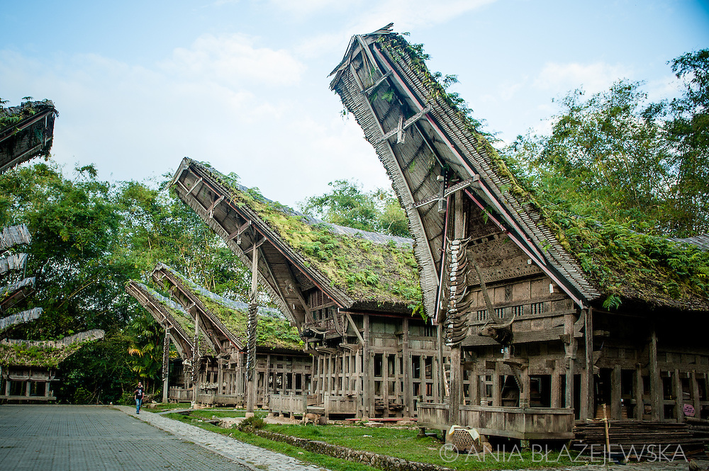 Indonesia, Sulawesi, Tana Toraja. Ke'te Kesu - a traditional village.<br />