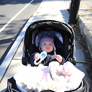 An eight month old baby girl in a stroller.  Photo Tim Clayton