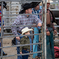 Havener Rodeo putting on a show at Macon County Fairgrounds, Decatur, Illinois, June 15, 2013. Photo: George Strohl