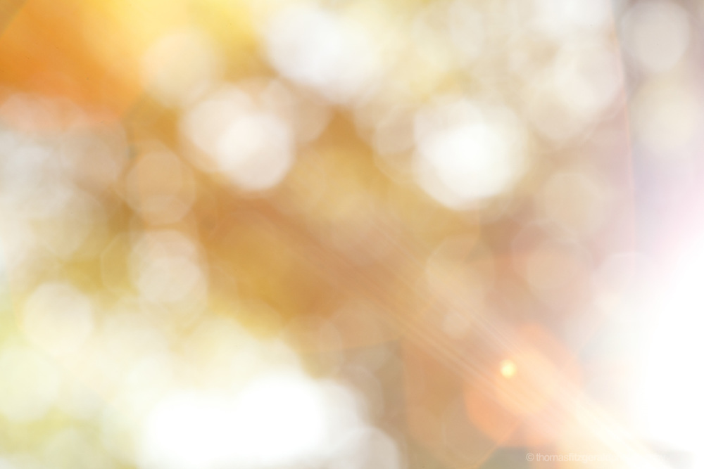 Abstract patterns of light and out of focus bokeh spots on a sunny warm day