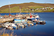 Fishing boats harbour Voe, Shetland Islands, Scotland