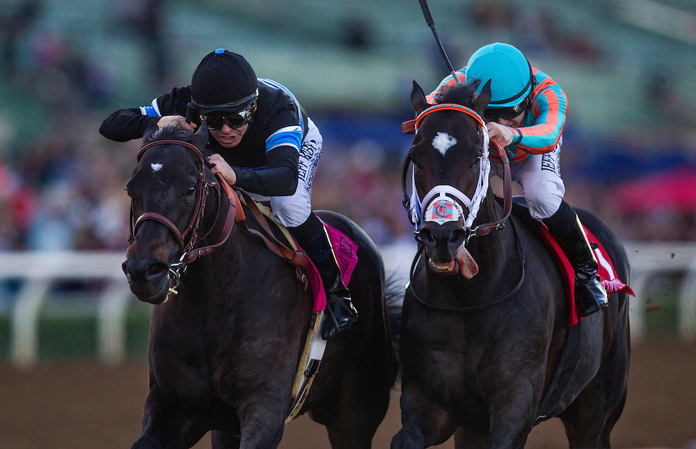December 26 2014: Shared Belief and Mike Smith defeat Conquest Two Step with Joe Talamo to win the Malibu Stakes at Santa Anita Park in Arcadia CA. Alex Evers/ESW/CSM