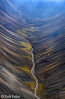 Our conservation expedition team member Todd Felkai captured this fantastic image of a stream meandering down a steep, high lying, beautifully textured mountain ridge during our flight by float plane to our destination deep into the Yukon's Peel Watershed.