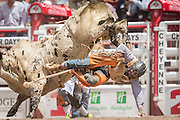 Bull rider Garrett Smith of Rexburg, Idaho is thrown from Cross Timber at the Cheyenne Frontier Days rodeo at Frontier Park Arena July 24, 2015 in Cheyenne, Wyoming. Frontier Days celebrates the cowboy traditions of the west with a rodeo, parade and fair.