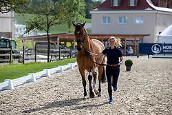 VON BREDOW-WERNDL Jessica (GER), ZAIRE E<br /> Balve - Longines Optimum 2019<br /> Vet-Check Dressurpferde Deutsche Meisterschaft<br /> 13. Juni 2019<br /> © www.sportfotos-lafrentz.de/Stefan Lafrentz