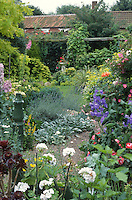 narrow garden with path and good planting