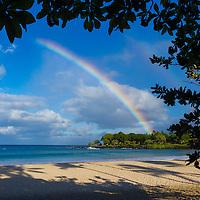 HAWAI'I LANDSCAPE