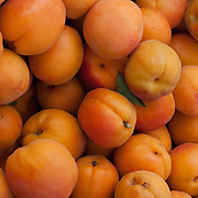 Apricots at a farm stand in Massachusetts
