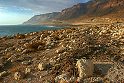 The Dead Sea, Israel landscape of the shore and cliff