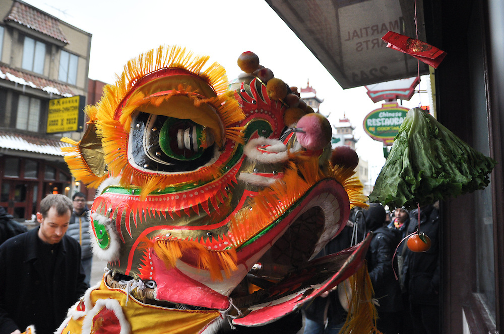"The Lion prepares to ""eat"" the lettuce and tangerine, to receive the red envelope containing money form the business. Chinese New Year, Chinatown, Chicago, February 6th, 2011"