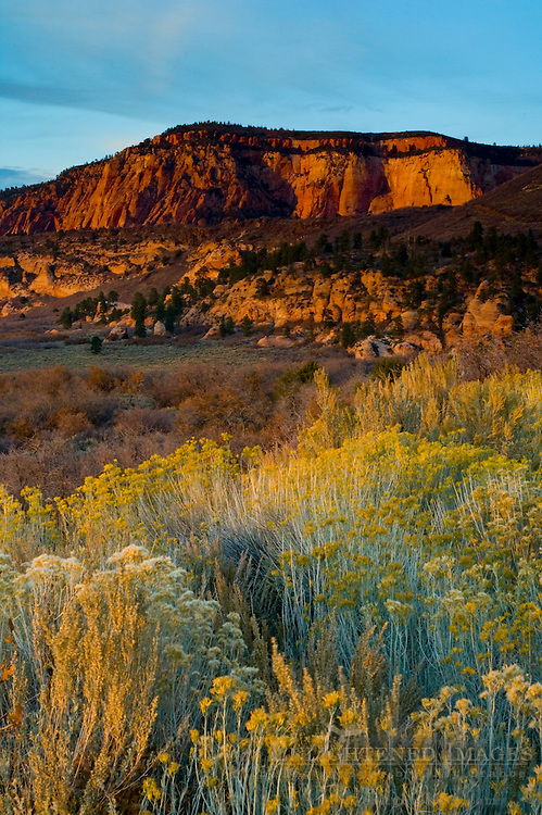 Sunset light ob red rock buttes on the Kolob Terrace, Zion National Park, Utah