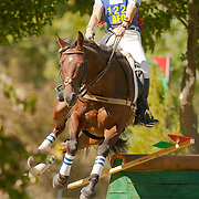 Wellpride American Eventing Championships