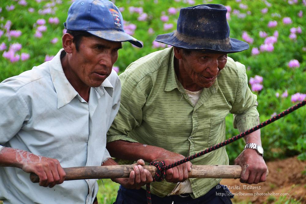 Quechua men working near Vacas, Cochabamba, Bolivia