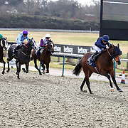 Lingfield 28th January