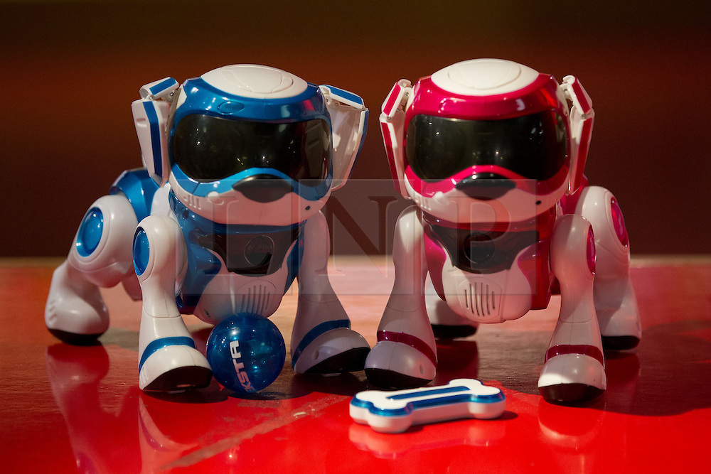 © Licensed to London News Pictures. 27/06/2013. London, UK. A pair of 'Teksta Puppy' robot toys (Hamleys price GB£75) are seen at the Christmas in June press event at Hamleys toy shop in London today (27/06/2013).  Held in retailers world famous Regents Street store, the event showcases the predicted top toys for Christmas 2013. Photo credit: Matt Cetti-Roberts/LNP