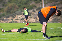 ESTEPONA - 06-01-2016, AZ in Spanje 6 januari, AZ speler Ron Vlaar, AZ speler Celso Ortiz.