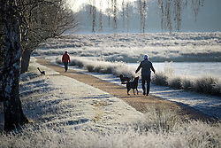 © Licensed to London News Pictures. 05/01/2017. London, UK. A man walks his dog through a frozen landscape in Richmond Park, London at sunrise, as cold weather continues across the UK. Photo credit: Ben Cawthra/LNP