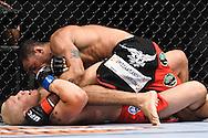 "ATLANTA, GEORGIA, SEPTEMBER 6, 2008: during ""UFC 88: Breakthrough"" inside Philips Arena in Atlanta, Georgia on September 6, 2008"