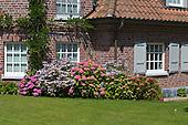 Natural Garden 807