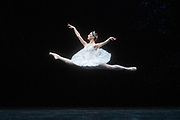 La Bayadere <br /> A ballet in three acts <br /> Choreography by Natalia Makarova <br /> After Marius Petipa <br /> The Royal Ballet <br /> At The Royal Opera House, Covent Garden, London, Great Britain <br /> General Rehearsal <br /> 30th October 2018 <br /> <br /> STRICT EMBARGO ON PICTURES UNTIL 2230HRS ON THURSDAY 1ST NOVEMBER 2018 <br /> <br /> Marianela Nunez as Nikiya <br /> A Bayadere and a temple dancer <br /> <br /> <br /> Photograph by Elliott Franks Royal Ballet's Live Cinema Season - La Bayadere is being screened in cinemas around the world on Tuesday 13th November 2018 <br />
