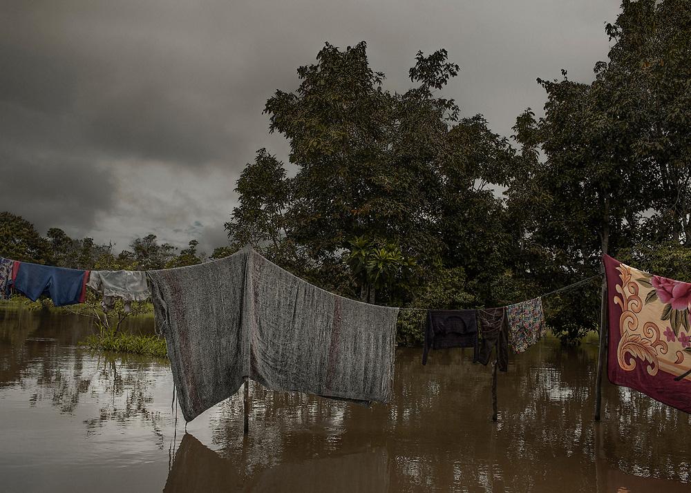Colombie, Amazonas, rio Amazonas.<br /> <br /> Saison des pluies.