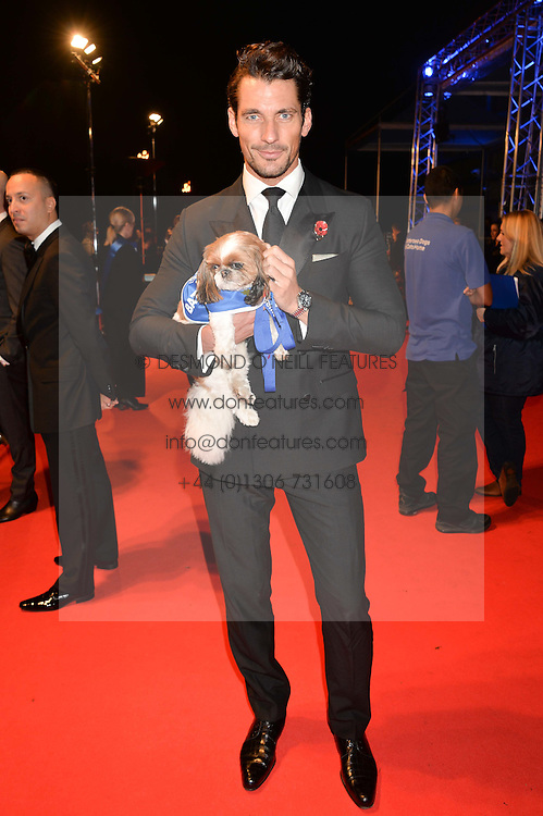 DAVID GANDY and Battersea dog at Battersea Dogs & Cats Home's Collars & Coats Gala Ball held at Battersea Evolution, Battersea Park, London on30th October 2014.