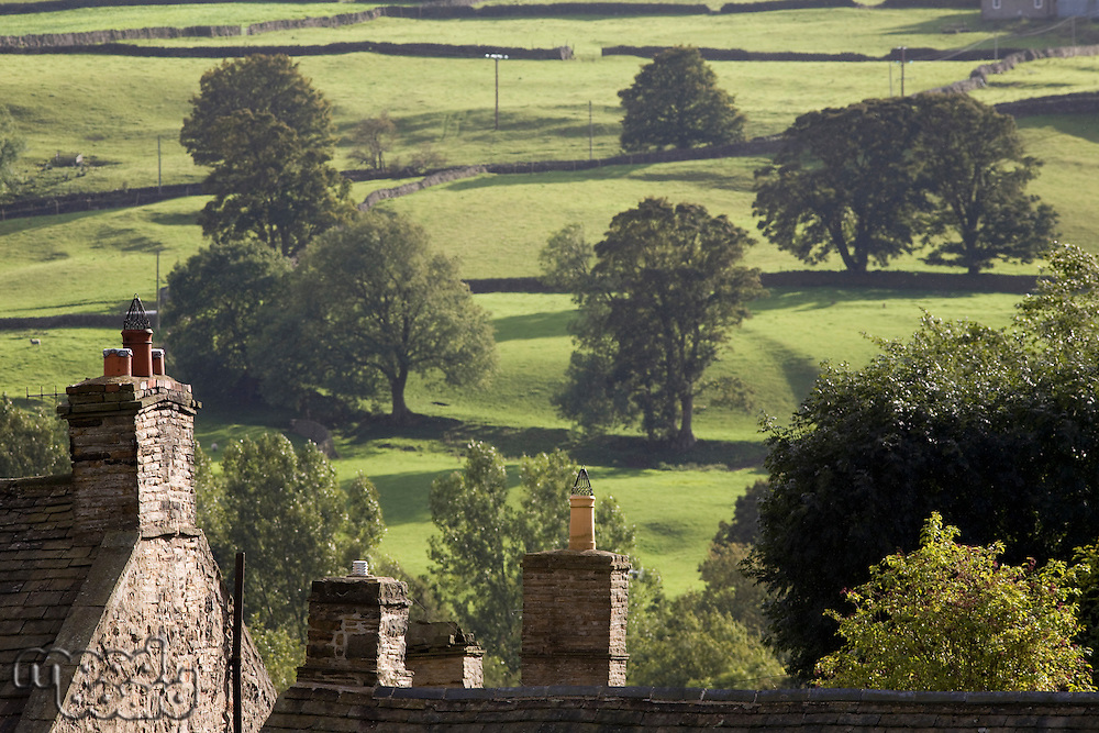 Roofs of houses and trees on fields in Yorkshire Dales Yorkshire England