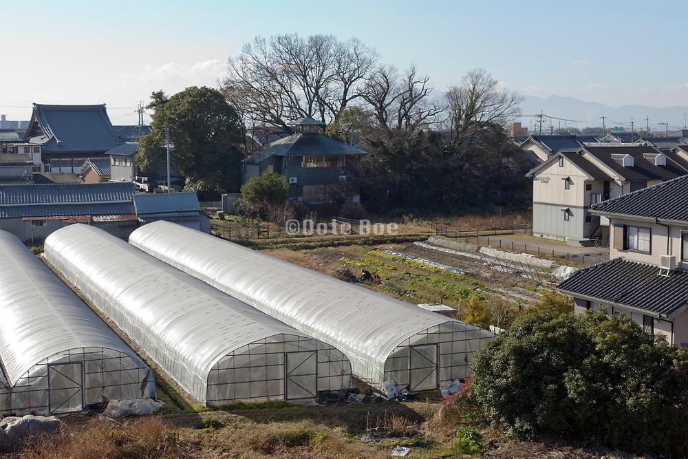 rural Japan at Ichinomoto just outside Nara