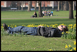 A visitor enjoys the spring like weather amongst the daffodils in St.James's Park  in London Thursday, 1st March 2012.  Photo by : Stephen Lock