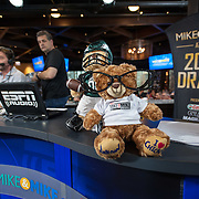 2015 ESPN - Mike & Mike NFL Draft