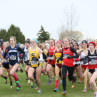 2015 NCAA Cross Country Championships: Sanjuanita Martinez (Cornell College), Katherine Tercek (Middlebury), Lucy Ramquist (UW-Eau Claire), Katie Sullivan (Haverford) at the NCAA Division III Cross Country Championships in Winneconne, Wisconsin, on November 22, 2015.