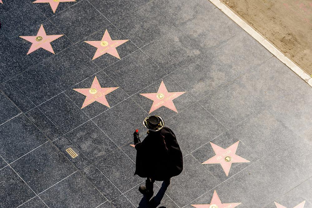 Hollywood Walk of Fame, Hollywood Blvd, Hollywood, Los Angeles, California