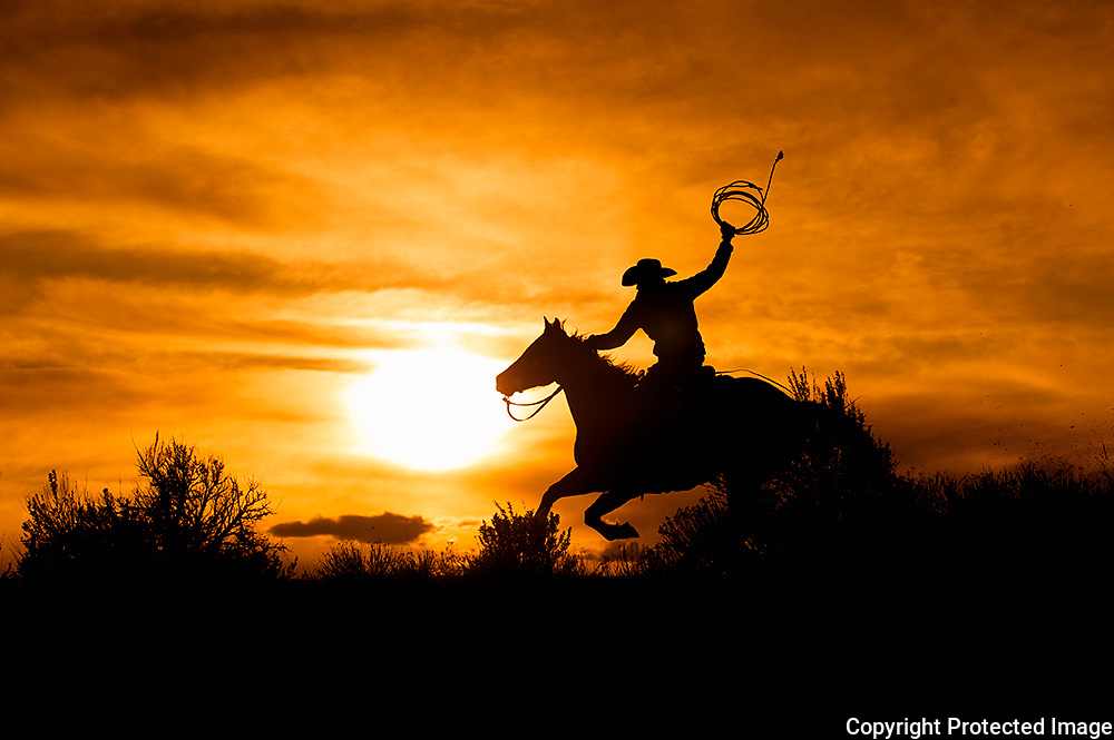 Cowboy and Rope Riding High at Sunset