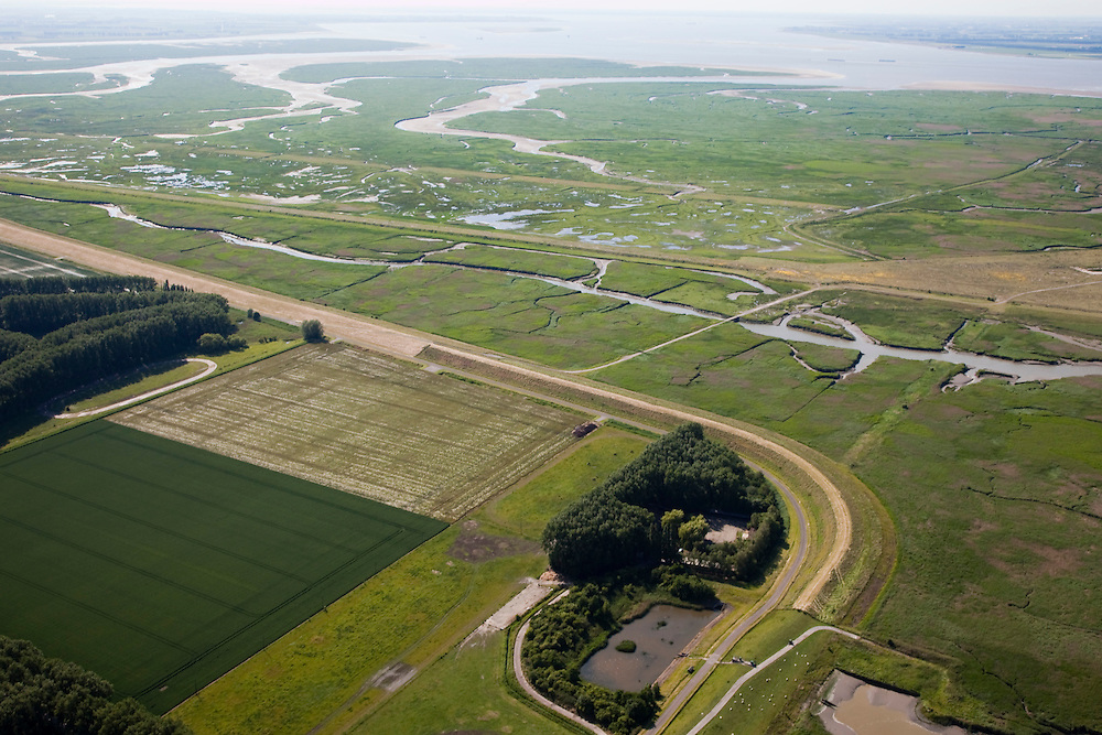 Nederland, Zeeland, Zeeuws-Vlaanderen, 12-06-2009; Hertogin Hedwigepolder met Verdronken Land van Saeftinghe in de achtergrond en het Nauw van Bath rechts aan de horizon. In verband met de komende verdieping van de vaargeul van de nabijgelegen Westerschelde, moet er volgens de Europese habitatrichtlijn natuurcompensatie komen. Door deze polder en de nabijgelegen Belgische Prosperpolder, a te ontpolderen, wordt er grond terug gegeven aan de natuur, zogenaamde natuurcompensatie (advies commissie onder leiding van Ed Nijpels). De maatregelen zijn omstreden, in het Belgisch deel van het gebied is men echter reeds begonnen..Hertogin Hedwigepolder with Drowned Land of Saeftinghe in the background. Because of the future enlargement of the fairway of the nearby Westerschelde, the nature has to be compensated (according to the European Habitats Directive). The Hertogin Hedwige polder (and the adjacent Belgian polder - on the other side of the border - the Prosperpolder) are to be given back to nature, i.e. are to be 'de-polderd'. The measures are controversial, but in the Belgian part of the polders works have already been started.Swart collectie, luchtfoto (25 procent toeslag); Swart Collection, aerial photo (additional fee required).foto Siebe Swart / photo Siebe Swart